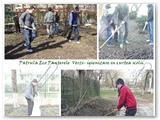 Proiecte eco IX-XII